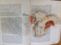 Mould due to food in book